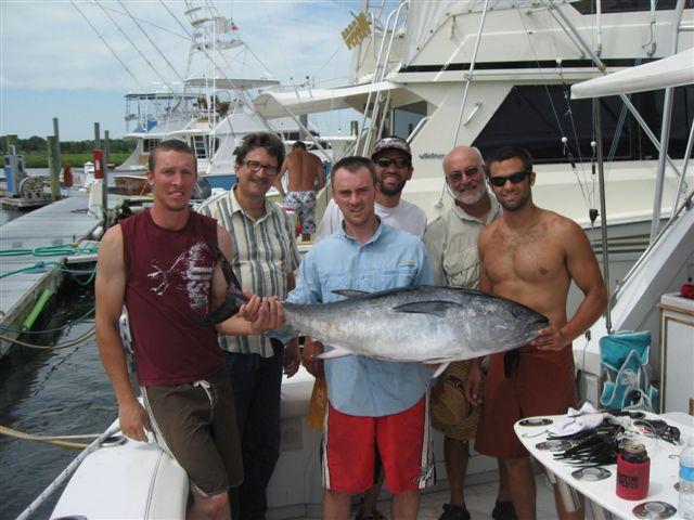 Maximum Gusto bluefin tuna