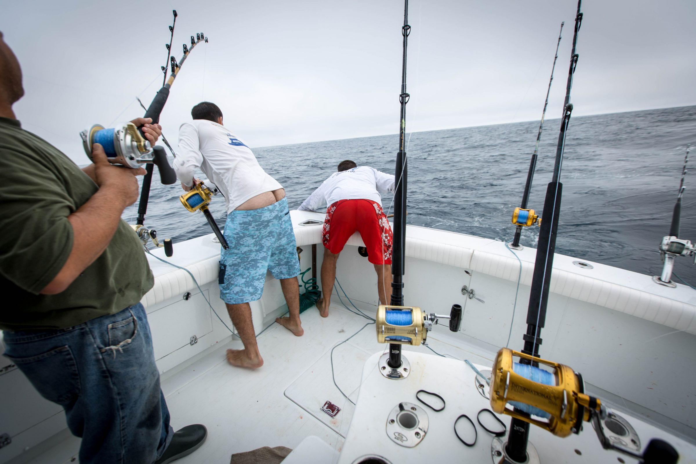 Maximum Gusto Sportfishing